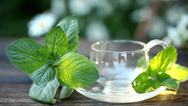 vidéos et rushes de délicieux thé vert dans un beau bol en verre sur la table - plante aromatique