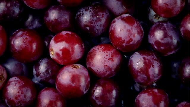vídeos de stock e filmes b-roll de delicious red grapes rotating closeup - grapes