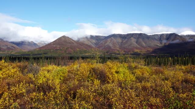 Denali mountain range video