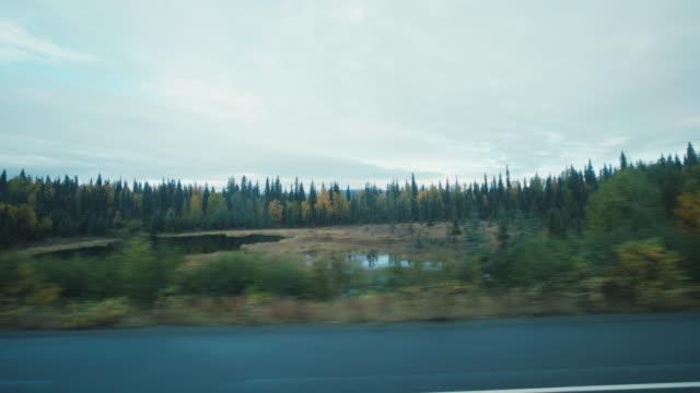 Denali Road video
