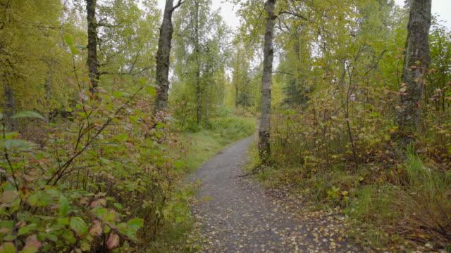 Denali trail video