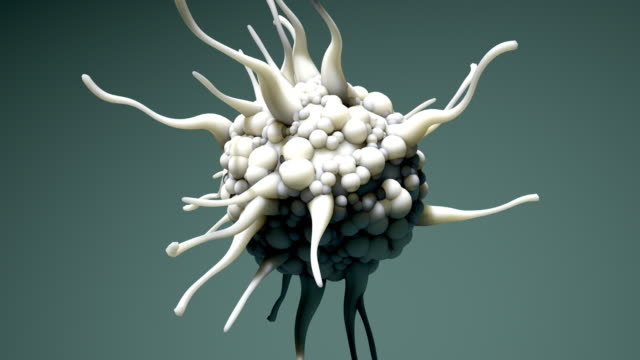 dendritic cell, cell of the immune system, in motion 4k - ripetizione video stock e b–roll