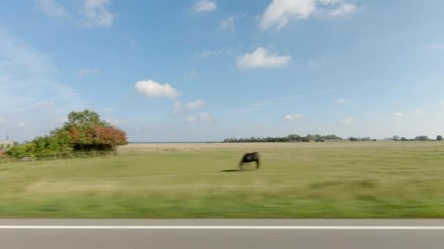 vidéos et rushes de danemark zélande iv série synchronisée plaque de conduite vue gauche - vue latérale