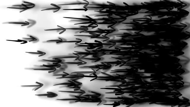 ARROWS, dense : linear flow (LOOP) video