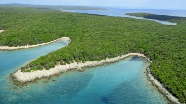 AERIAL Dense Mediterranean coastline forest video