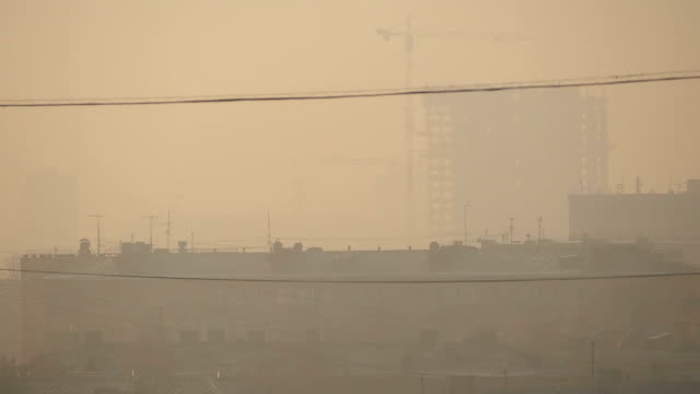 dense smog nel quartiere residenziale - antenna parte del corpo animale video stock e b–roll