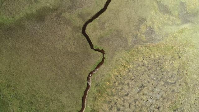 descending on a river passing through a green savannah landscape - równina filmów i materiałów b-roll