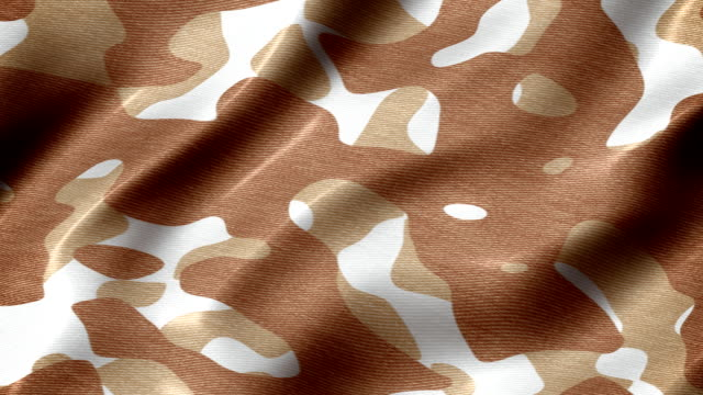 Desert camouflage pattern abstract motion background seamless loop Slow waving desert camouflage fabric close-up. Loopable. camouflage clothing stock videos & royalty-free footage