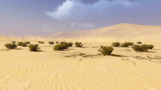 Desert landscape. Time lapse video