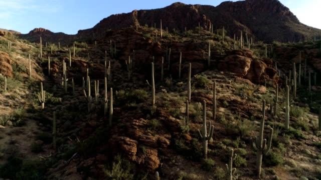 Desert Mountain Pass Drone Footage - Sunrise View