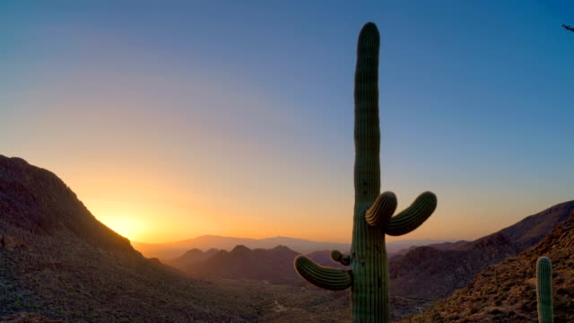 Desert Sunrise Timelapse/Hyperlapse - vista 6 - vídeo