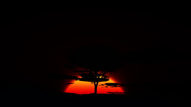 HD - Desert sunrise video