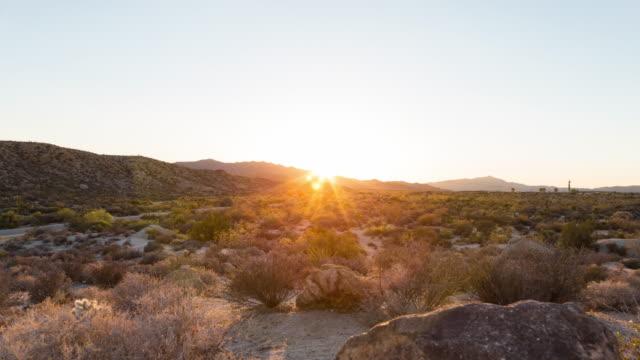 Desert Sunset Joshua Tree National Park, California video