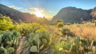 istock Desert Sunset 451165743