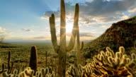 istock Desert Valley Sunset Timelapse/Hyperlapse - Sliding Motion 1013517992