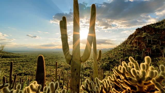 vídeos de stock, filmes e b-roll de vale do sol timelapse/hyperlapse - movimento de deslizamento do deserto - deserto