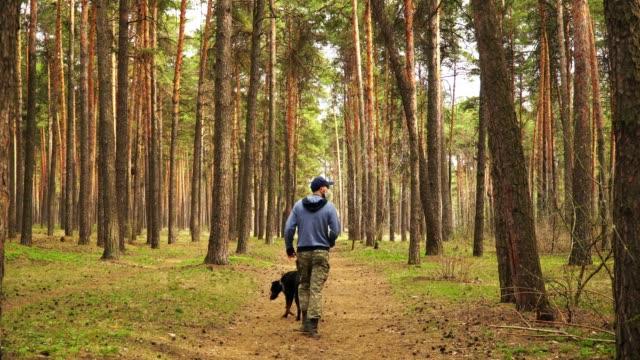 övergiven skog och en djurägare som täcker hans ansikte med en skyddande medicinsk mask - hund skog bildbanksvideor och videomaterial från bakom kulisserna