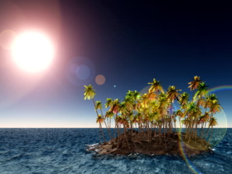 Deserted island with palm trees video