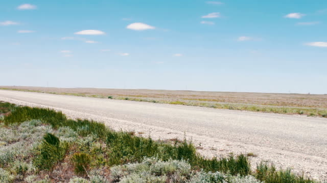 A deserted road in the steppe along which cars drive in the Republic of Kalmykia, Russia video