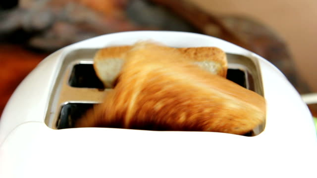 Design of toast whole wheat bread video