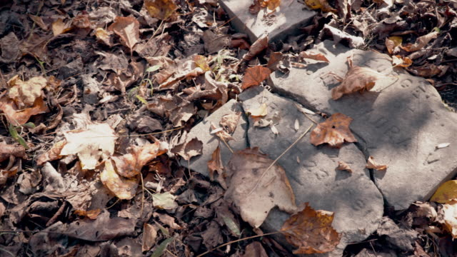 Destroyed Tombstone and Grave During Autumn in Abandoned Graveyard
