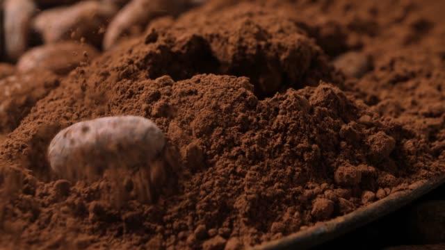 vídeos de stock e filmes b-roll de detail of cocoa beans falling into cocoa powder. slow motion 50%. - cacau em pó