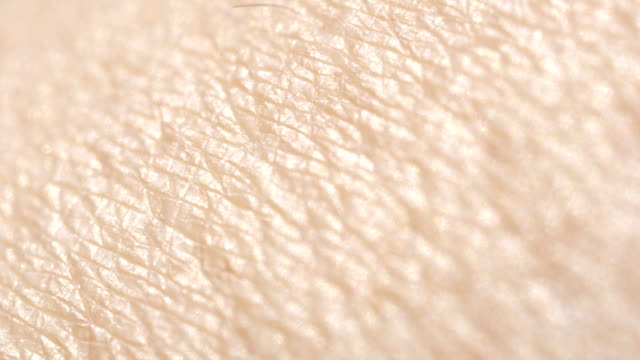 close up macro dof: detail of dry caucasian skin. hairless skin pattern - pelle video stock e b–roll