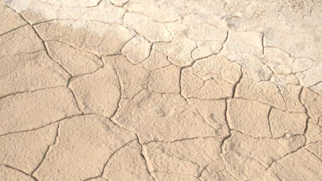 vídeos de stock, filmes e b-roll de close-up: detalhe do solo árido rachado seco no deserto ensolarado quente - seco