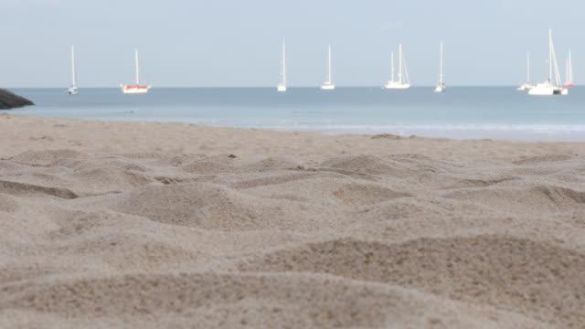 vidéos et rushes de détail des pieds en marchant le long de la plage de sable fin - évasion du réel
