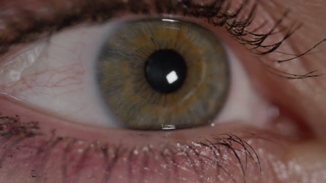 SLOW MOTION CLOSE UP: Detail of green eye looking left and right in bright space video