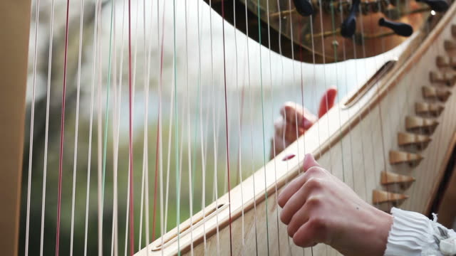 Detail of harp,time lapse