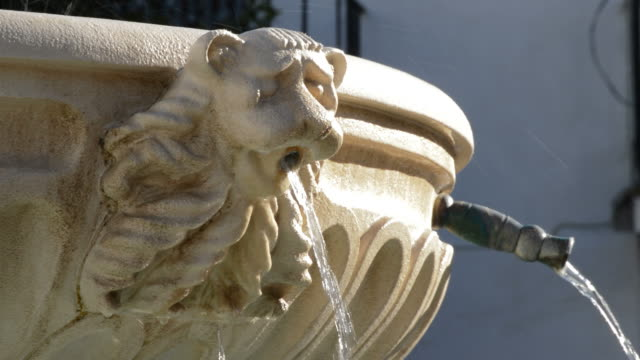 Detail of sculpted face of mouth of a lion in a public fountain pouring water video