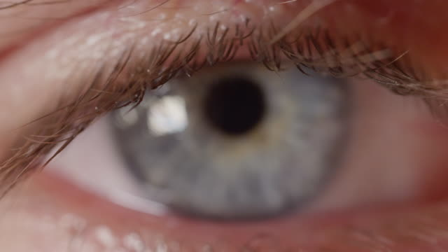 MACRO DOF: Detail of vivid blue colored eye looking into camera and not blinking video
