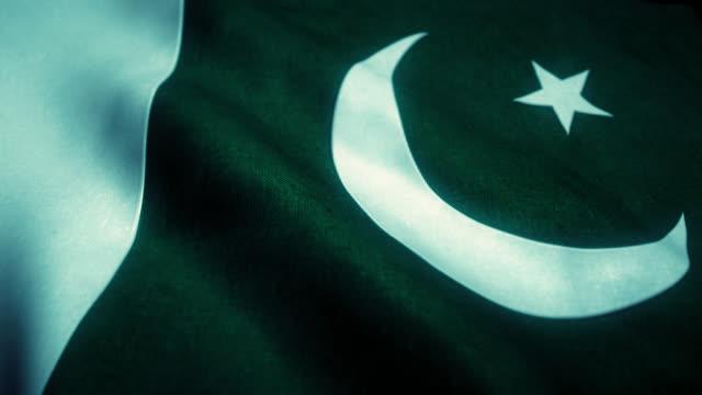 Detailed Flag of Pakistan waving seamless (loop).