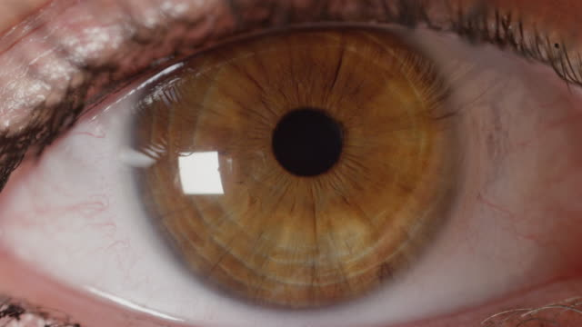 SLOW MOTION CLOSE UP: Detailed look at beautiful amber eye opening and observing video