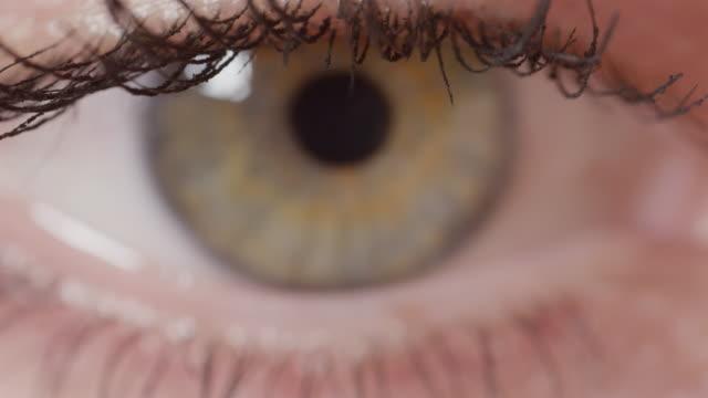 MACRO DOF: Detailed view of beautiful glimmering green eye with brown streaks. video