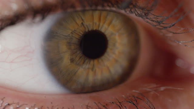 SLOW MOTION CLOSE UP: Detailed view of beautiful green eye with brown streaks. video