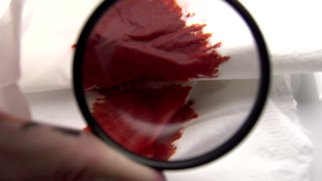 Detective Using Magnifying Glass To Inspect A Blood Crime video
