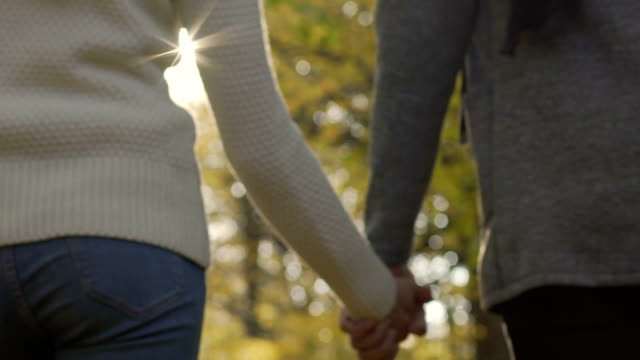 Devoted couple in relationship holding hands and walking autumn park together video