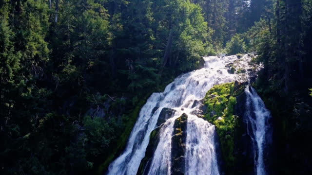 Diamond Creek Falls, Oregon - Drone tiro - vídeo