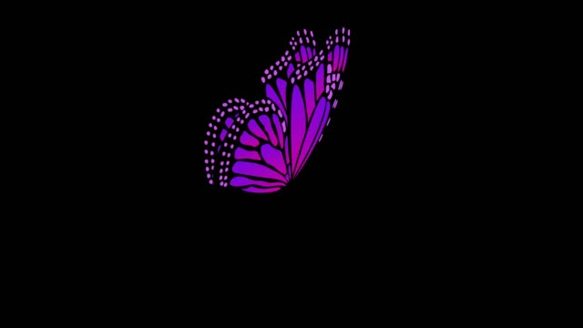 Different Colors Perspective view Butterfly Flapping Wings Animations With Alpha Matte 5 Seconds Seamless Loop