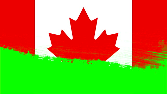 4K - 3 Different Paint Brush Style Transition Animation with Canada  Country Flag