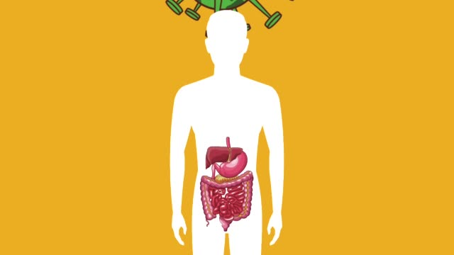 Bидео Digestive system with stomach ache HD animation