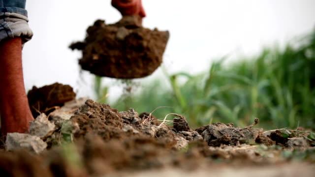 vidéos et rushes de creuser dans le sol humide - équipement agricole
