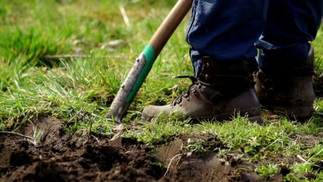 SLOW MOTION: Digging
