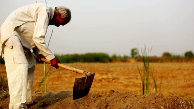 digging - haryana video stock e b–roll