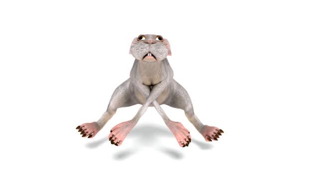Animation numérique d'un Animal danse - Vidéo