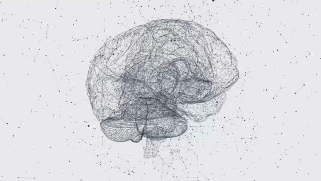 vídeos de stock e filmes b-roll de digital data and network connection of human brain. 3d animation. - sistema nervoso humano