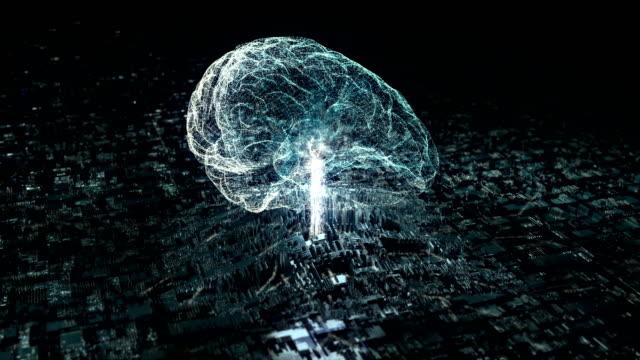數位資料流程在腦中的傳輸 - 部分 個影片檔及 b 捲影像