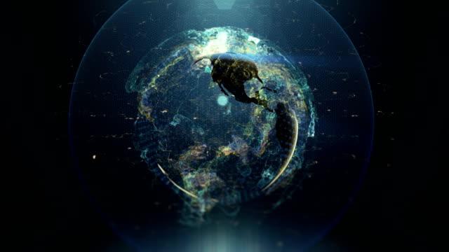 數位地球 - golden ratio 個影片檔及 b 捲影像